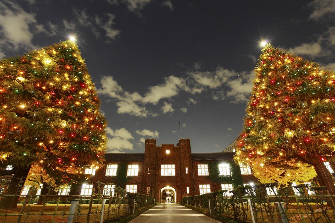 3-4立教通りクリスマスツリー