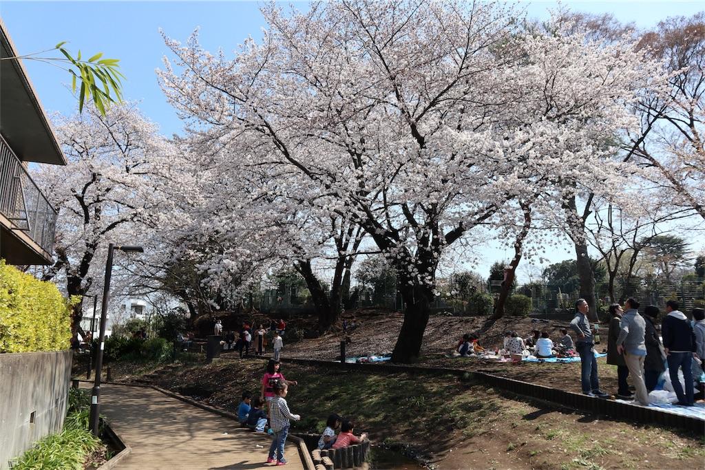 ㉒ねこじゃらし公園