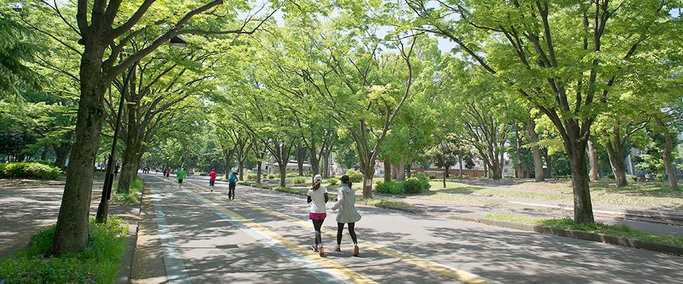 ㉓駒沢オリンピック公園
