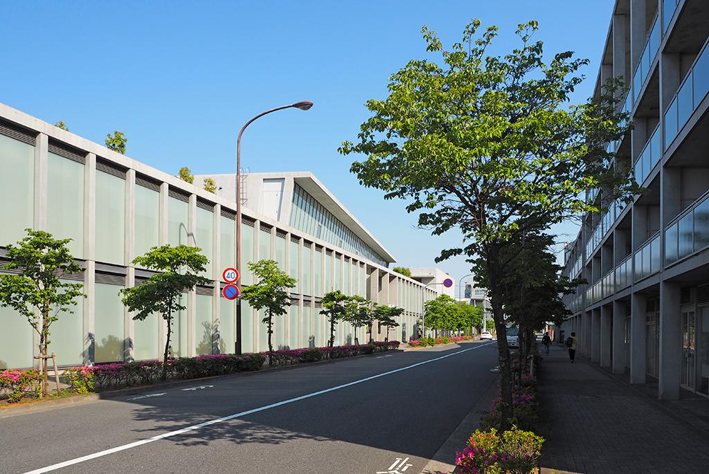 仙川 安藤忠雄ストリート2