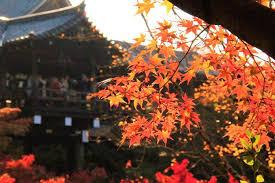 グランバリュー東福寺